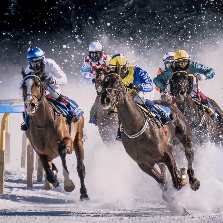 Horses running signifying danger.